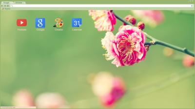 how to change theme on google chrome with windows 8