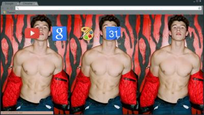 Shawn Mendes Chrome Themes Themebeta