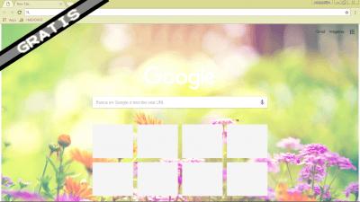 Tumblr Chrome Themes Themebeta