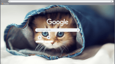Cat Burrito Chrome Themes Themebeta