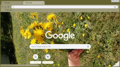 google bilder blumen blumen chrome themes - themebeta
