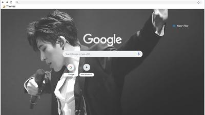 Ikon Chrome Themes Themebeta
