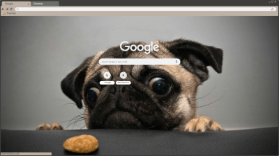 Pug Chrome Themes Themebeta