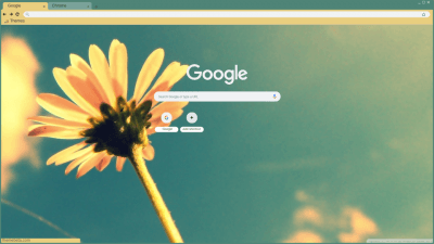 Aesthetic Chrome Themes Themebeta