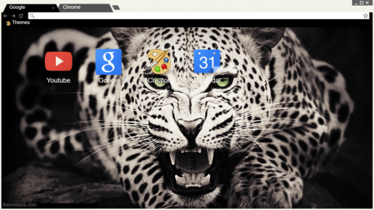 cheetah-wallpaper-hd