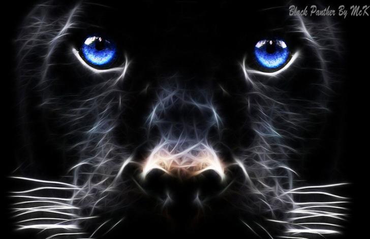 Black Panther Chrome Theme - ThemeBeta